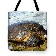 Green Sea Turtle Of Hawaii Tote Bag