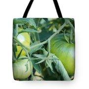 Green Tomato On The Vine Tote Bag
