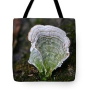 Green Turkey Tails Tote Bag