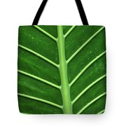 Green Veiny Leaf 1 Tote Bag