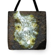 Green, White And Brown Flatworm, Bali Tote Bag