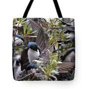 Grey Feathers - Tree Swallow Tote Bag