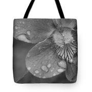 Grey Violet Tote Bag