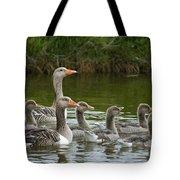 Greylag Goose Anser Anser Couple Tote Bag