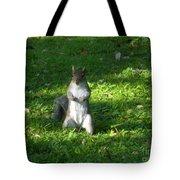 Greynolds Park Squirrel Tote Bag