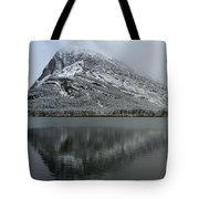Grinnell Mirror Tote Bag