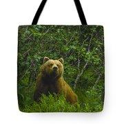 Grizzly Bear Alaska Tote Bag