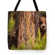 Grizzly Bear Cub Up A Tree, Yukon Tote Bag