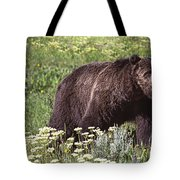 Grizzly Bear In Yellowstone Neg.28 Tote Bag