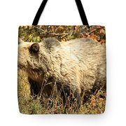 Grizzly Camouflage Tote Bag