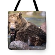Grizzly Cavorts In Stream Tote Bag