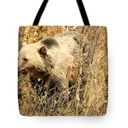 Grizzly In The Brush Tote Bag
