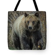 Grizzly Ramble Tote Bag