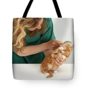 Grooming A Kitten Tote Bag