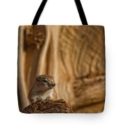 Ground Squirrel At Monument Valley Tote Bag