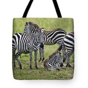 Group Of Barcodes Tote Bag