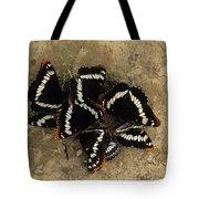 Group Of Butterflies Tote Bag