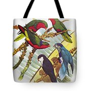 Group Of Lorys Tote Bag