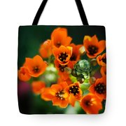 Growing Nebula Tote Bag