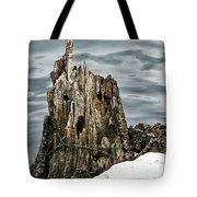 Grumpy Stump Tote Bag