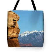 Guardian Of Arches Tote Bag