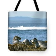 Guardians Of Agementicus Tote Bag