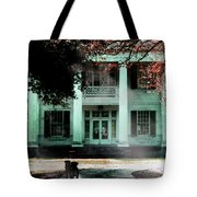 Guardians Of The Past Tote Bag
