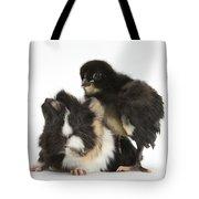 Guinea Pig And Black Bantam Chick Tote Bag
