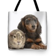 Guinea Pig And Blue-and-tan Dachshund Tote Bag