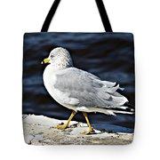 Gull 2 Tote Bag