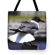 Gull Dance Tote Bag