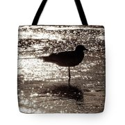 Gull In Silver Tidal Pool Tote Bag