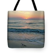 Gulls At Sunset On The Gulf Tote Bag
