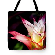 Guzmania Apache Flower Tote Bag