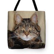 Gypsy 0007 Tote Bag