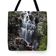 Hadlock Falls Acadia Tote Bag