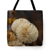 Hairy Aster Tote Bag