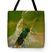 Halicid Bee 12 Tote Bag