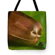 Halicid Bee Tote Bag