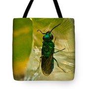 Halicid Wasp 3 Tote Bag