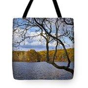 Hall Lake In Autumn No 0118 Tote Bag