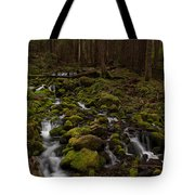 Hall Of The Mosses Tote Bag