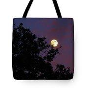 Halloween Moon 2009 Tote Bag