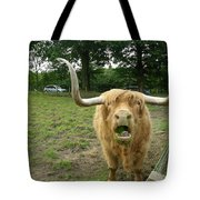 Hamish Highland Bull Tote Bag