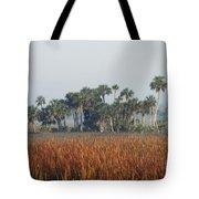 Hammock, Everglades National Park Tote Bag