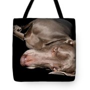 Hammy Weim Tote Bag