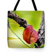 Hanging By A Limb Tote Bag