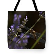 Hanging In The Lavender Tote Bag