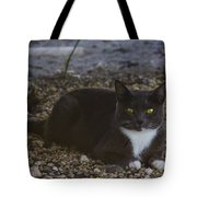 Hanging Out By The Creek Tote Bag