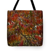 Hanging Out Clothes Tote Bag